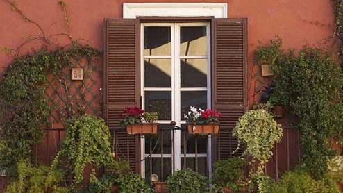 Wie viel Pflanze auf dem Balkon ist erlaubt?