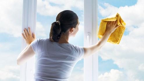 Wohnungsreinigung: Fenster reinigen