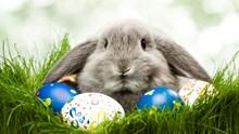 Umzug an Ostern