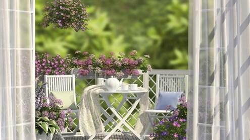 Terrazze e balconi trasformati in oasi di verde