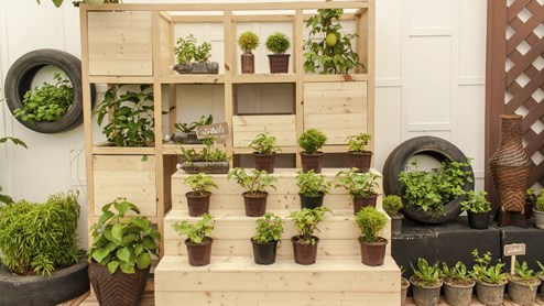 garten wie aus terrasse oder balkon eine gr ne oase wird. Black Bedroom Furniture Sets. Home Design Ideas