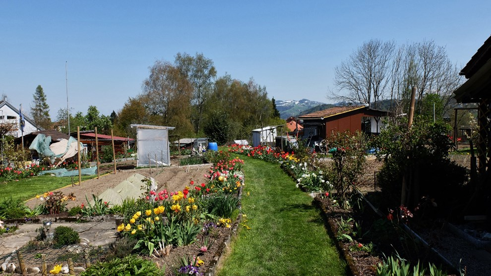 Mon jardin en ville le jardin ouvrier for Jardin ouvrier