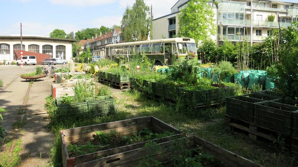 Progettare Il Giardino Da Soli : Urban gardening: deposito dei tram di burgenziel