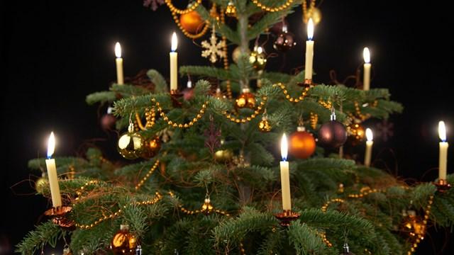 Bougie Sapin De Noel Eclairage du sapin de Noël: bougies de cire, électriques ou