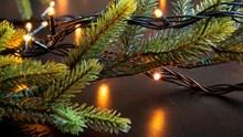 Weihnachtsbaumbeleuchtung: Wachskerzen, Elektrokerzen oder Lichterketten?