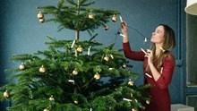 Pour que votre sapin de Noël conserve ses aiguilles vertes plus longtemps